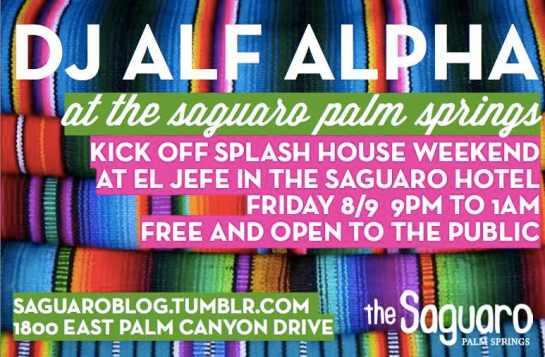 Splash House Pre Party 2013 with Alf Alpha